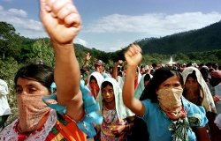 image - environmental activism in mexico